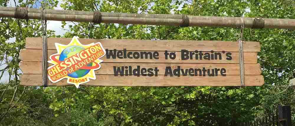 Mayer Brown Sports & Social Club outing to Chessington World of Adventures
